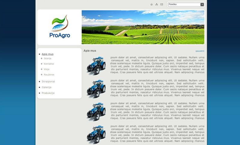 Interneto svetainės dizaino pritaikymas sau